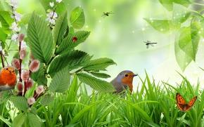 Рендеринг: трава, ветки, птицы, бабочки, art