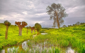 Пейзажи: Сельская идиллия, Нидерланды, холмы, деревья, водоём, пейзаж