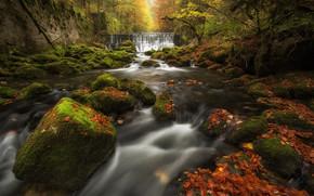 Пейзажи: Areuse Gorge, Val-De-Travers, Switzerland, ущелье Аройзе, Швейцария, водопад, каскад, река, камни, листья, мох, лес, осень