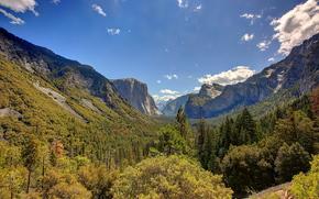 Пейзажи: Yosemite National Park, California, пейзаж