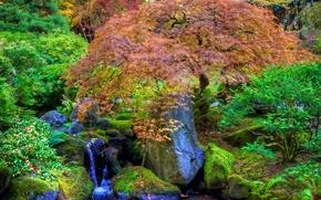 japanese garden, Японский сад, водопад, камни, деревья, пруд, парк обои, фото