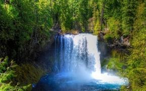 лес, деревья, водопад, пейзаж обои, фото