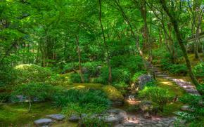 japanese garden, сад, парк, деревья, пейзаж обои, фото