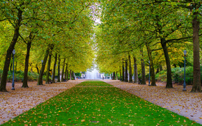 Пейзажи: парк, осень, дорога, деревья, пейзаж