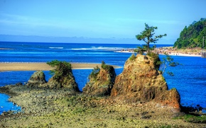 Пейзажи: море, скалы, берег, деревья, пейзаж