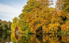 Пейзажи: Stourhead Garden, Wiltshire, England, Стурхед, Уилтшир, Англия, пейзажный парк, озеро, осень, деревья, отражение