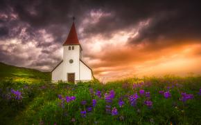 Пейзажи: V?k ? M?rdal, Iceland, Вик, Исландия, церковь, закат, луг, цветы, люпины