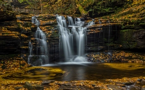 Пейзажи: Ricketts Glen State Park, Pennsylvania, Пенсильвания, водопад, каскад, листья, осень