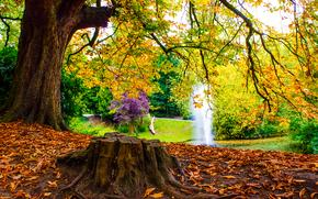 Пейзажи: осень, парк, пруд, фонтан, деревья, пейзаж