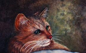 Рендеринг: кошка, мордочка, взгляд, art