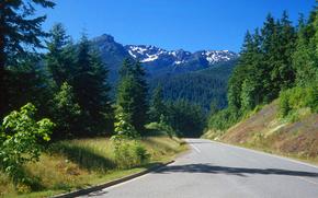 Пейзажи: Olympic Nat Park, Washington, дорога, горы, деревья, пейзаж