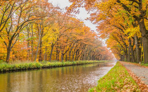 осень, канал, дорога, деревья, пейзаж обои, фото