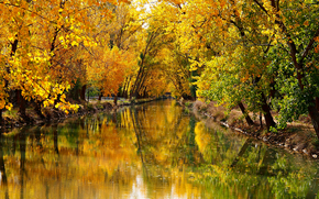 Обои Пейзажи: осень, канал, деревья, пейзаж