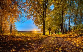 Обои Пейзажи: осень, закат, лес, дорога, деревья, пейзаж