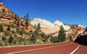 Пейзажи: Zion National Park, дорога, горы, пейзаж
