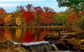 Пейзажи: Belmont Lake, Belmont Lake State Park, Babylon, New York, Озеро Белмонт, Вавилон, штат Нью-Йорк, парк, осень, озеро, деревья