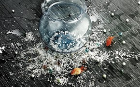 Ситуации: аквариум, рыбки, настроение