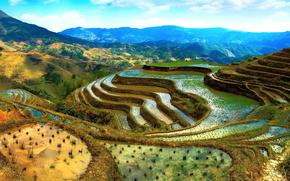 висячие сады,  рисовые поля,  горы,  терассы,  Китай обои, фото