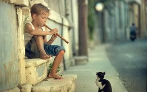 играй,  музыкант,  мальчик,  дудочка,  кот обои, фото