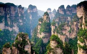 китай,  горы,  скалы,  вершины,  лес,  деревья обои, фото