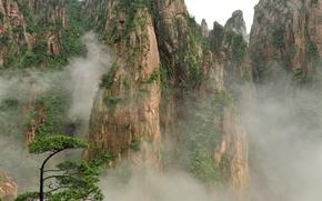 Китай, горы, растительность, дерево, туман обои, фото