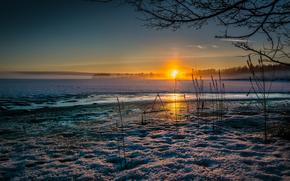 закат, солнце, холод, снег, зима, трава, сухая, лед, озеро обои, фото