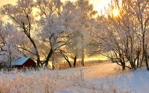 зима, дом, деревья, заснеженные, закат, солнце, снег, дорога обои, фото