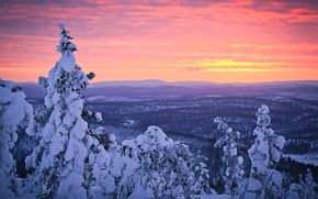 Финляндия, Лапландия, зима, январь, снег, лес, закат, небо, sampsa wesslin рhotography обои, фото