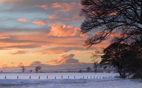 природа, пейзаж, закат, зима, снег, деревья обои, фото