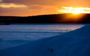 зима, вечер, закат, лес, снег, природа обои, фото