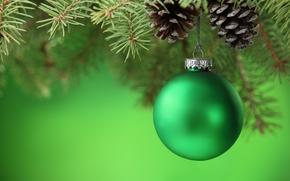 шар, шарик, зеленый, шишки, ветка, елка, ель, игрушки, елочные, Новый Год, Рождество, Новый год обои, фото