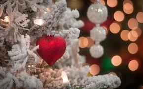 новый год, праздник, игрушка, сердце, елка, ветки, снег, Новый год обои, фото