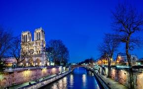 notre dame de paris, france, paris, Нотр-Дам-де-Пари, Франция, Париж, Собор Парижской Богоматери, город, ночь, деревья, мост, река, seine, Сена, вода, свет, отражение обои, фото