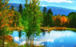Colorado, pond, pond, autumn, trees, landscape