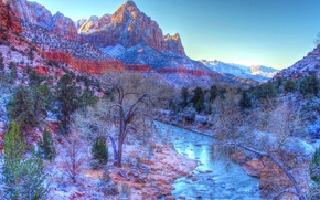Zion National Park, small river, Mountains, trees, landscape
