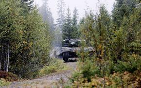 tank, forest, battle, Tank