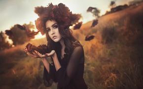 portret, Petale, vânt, Flori