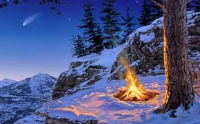 Montanhas, FOGUEIRA, noite, neve