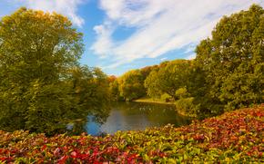 Frognerparken, Oslo, park, trees, pond, landscape