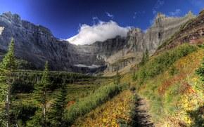 Mountains, trees, landscape
