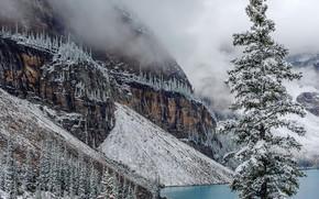 Moraine, Banff National Park, Canada, lake, trees, landscape