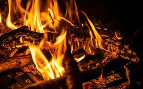 костёр, пламя, угли