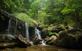 forest, trees, waterfall, Rocks, stones, nature