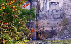 autumn, trees, waterfall, nature