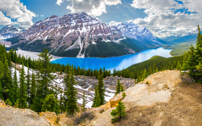 Peyto Lake, Banff National Park, AB, Canada
