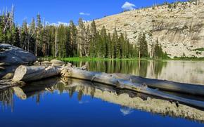 Mountains, lake, trees, landscape, Yosemite National Park