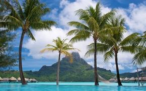 Thalasso, Bora Bora, mare, Palms, peisaj