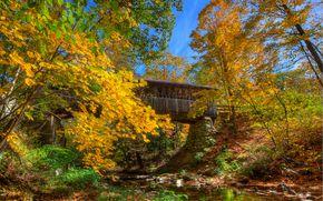 râu, toamnă, pod, copaci, peisaj