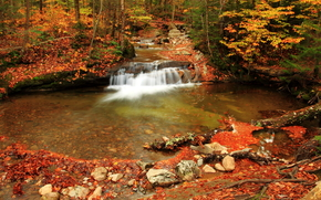 autumn, small river, waterfall, trees, nature