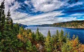 river, trees, Quebec, Canada, landscape